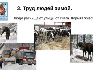3. Труд людей зимой. Люди расчищают улицы от снега. Кормят животных.