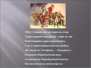 Шел Суворов, шел на турок по степи. Турок хитрый и коварный – знай, не спи.