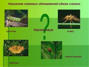 Назовите степных обитателей одним словом. бабочка божья коровка комар кузнечи