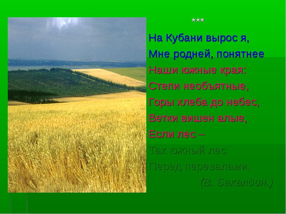 *** На Кубани вырос я, Мне родней, понятнее Наши южные края: Ст...