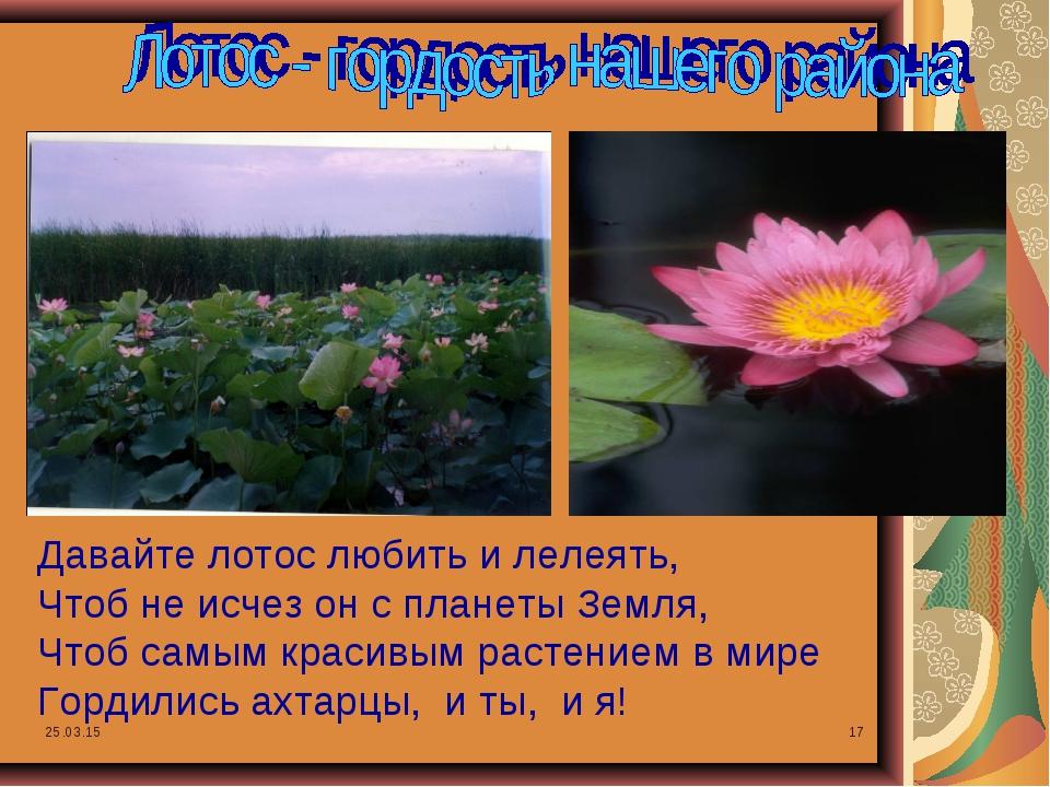 * * Давайте лотос любить и лелеять, Чтоб не исчез он с планеты Земля, Чтоб са...