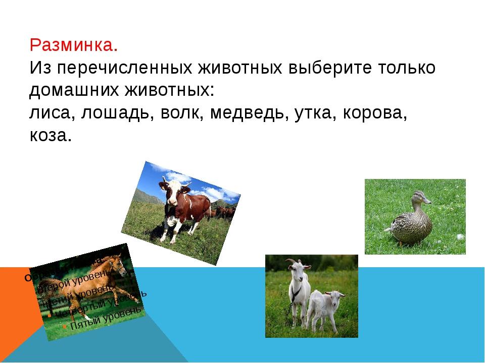 Разминка. Из перечисленных животных выберите только домашних животных: лиса,...