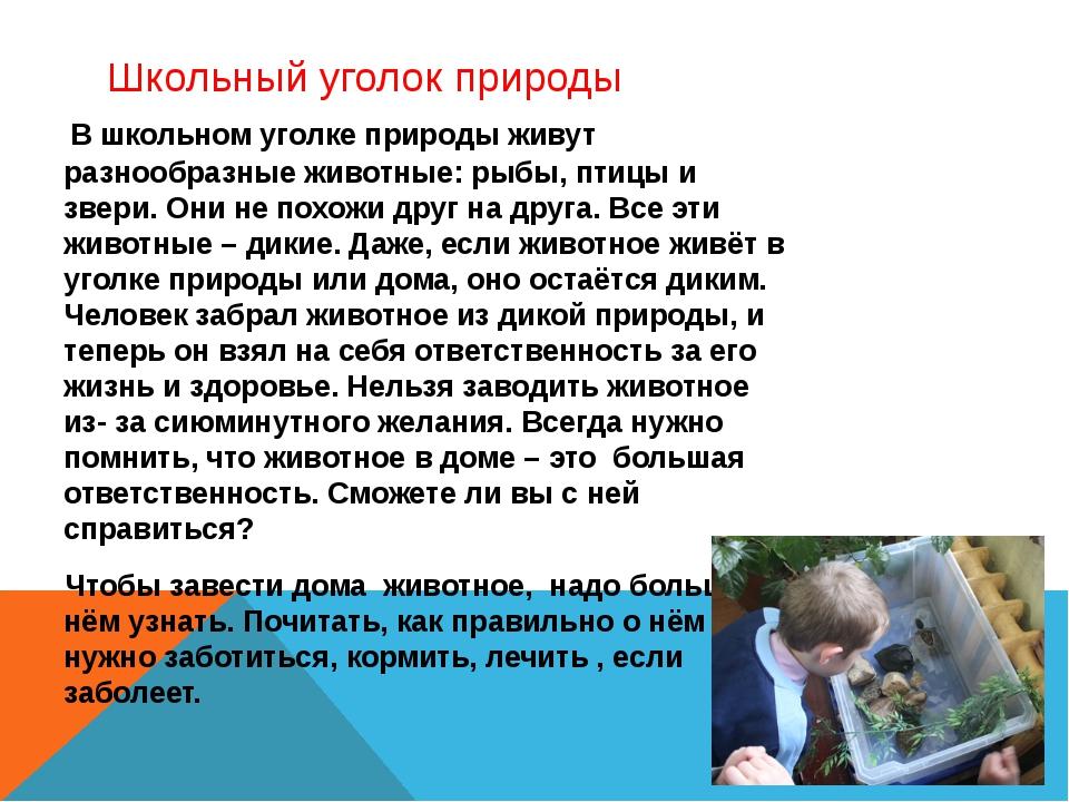 Школьный уголок природы В школьном уголке природы живут разнообразные животны...