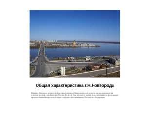 Общая характеристика г.Н.Новгорода Нижний Новгород является областным центром