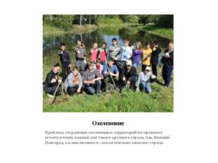 Озеленение Проблема сохранения озелененных территорий по-прежнему остается оч