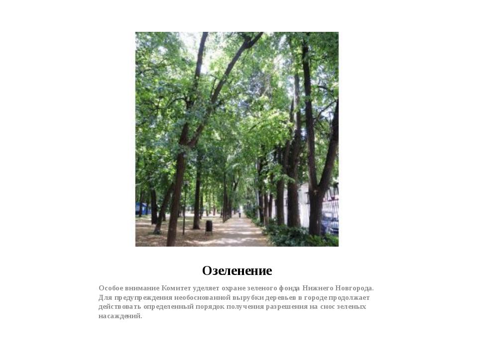 Озеленение Особое внимание Комитет уделяет охране зеленого фонда Нижнего Новг...