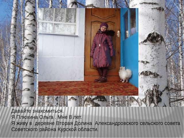 Давайте знакомиться. Я Плюхина Ольга . Мне 8 лет. Я живу в деревне Вторая Дол...