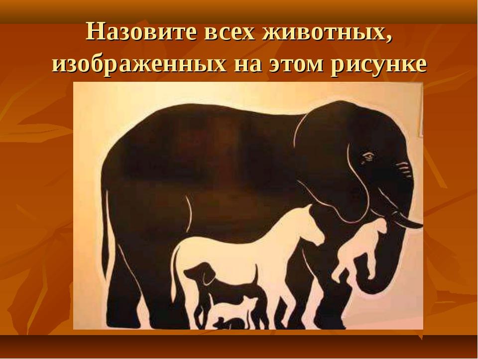Назовите всех животных, изображенных на этом рисунке