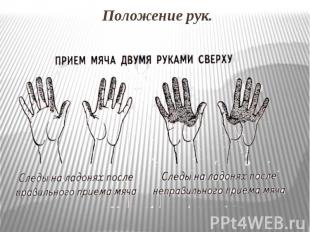 http://ppt4web.ru/images/4134/59976/310/img4.jpg