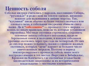 """Ценность соболя Собольи шкурки считались у народов, населявших Сибирь, """"рухля"""