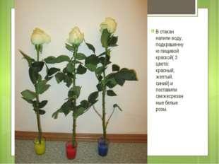 В стакан налили воду, подкрашенную пищевой краской( 3 цвета: красный, желтый