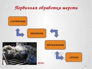 Первичная обработка шерсти СОРТИРОВКА ТРЕПАНИЕ ПРОМЫВАНИЕ СУШКА РУНО