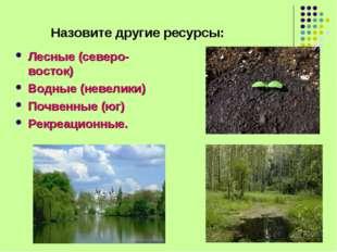 Назовите другие ресурсы: Лесные (северо-восток) Водные (невелики) Почвенные