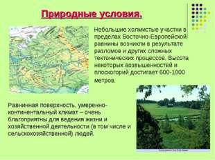 Природные условия. Небольшие холмистые участки в пределах Восточно-Европейско