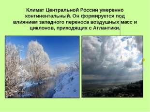 Климат Центральной России умеренно континентальный. Он формируется под влияни