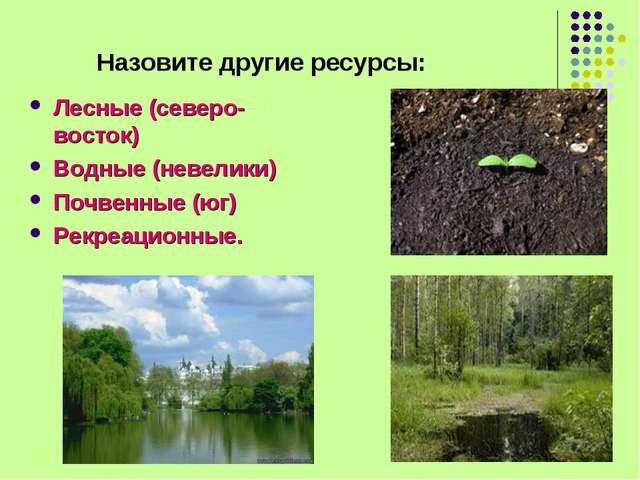 Назовите другие ресурсы: Лесные (северо-восток) Водные (невелики) Почвенные...