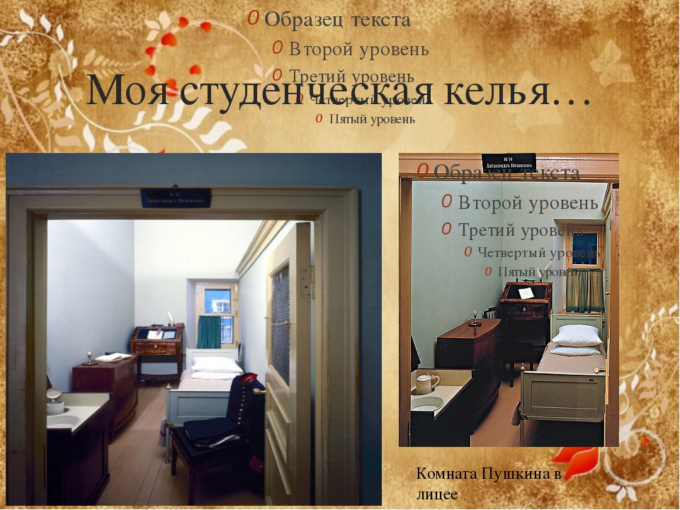 Моя студенческая келья… Комната Пушкина в лицее
