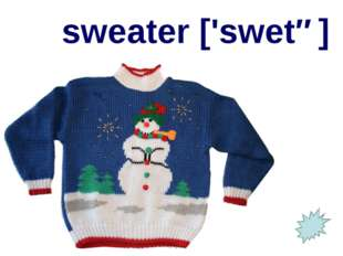 sweater ['swetə]