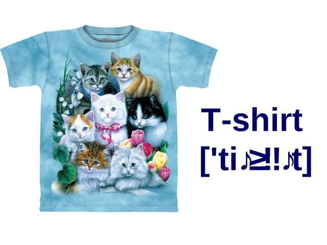 T-shirt ['tiːʃɜːt]