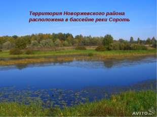 Территория Новоржевского района расположена в басcейне реки Сороть
