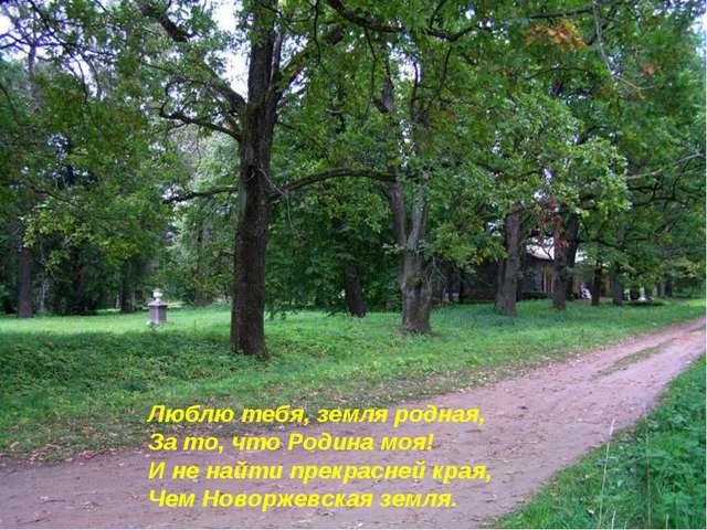 Люблю тебя, земля родная, За то, что Родина моя! И не найти прекрасней края,...