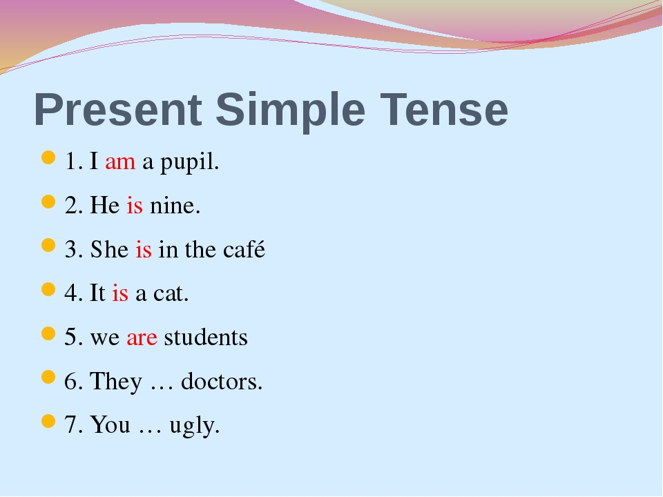 Present Simple Tense 1. I am a pupil. 2. He is nine. 3. She is in the café 4....