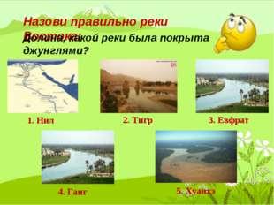 Назови правильно реки Востока: 1. Нил 2. Тигр 3. Евфрат 4. Ганг 5. Хуанхэ Дол