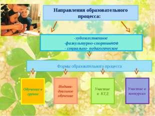 Обучение в группе Направления образовательного процесса: Индиви- дуальное об