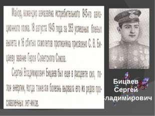 Бицаев Сергей Владимирович