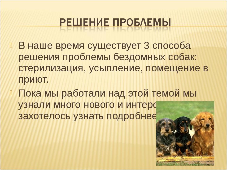 В наше время существует 3 способа решения проблемы бездомных собак: стерилиза...