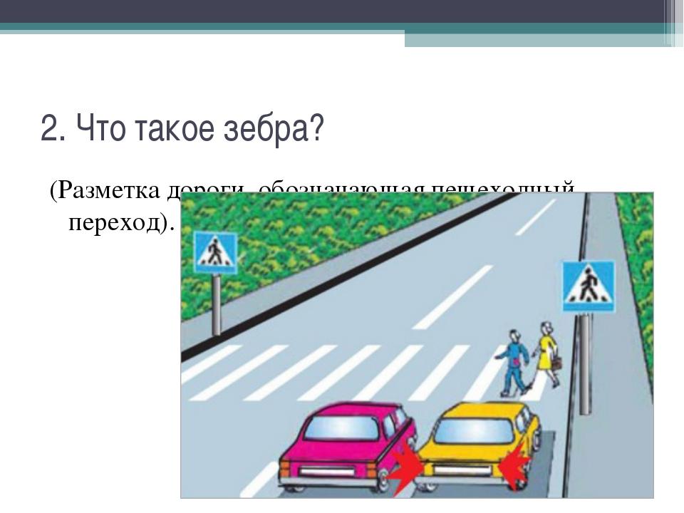 2. Что такое зебра? (Разметка дороги, обозначающая пешеходный переход).