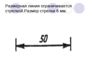 Размерная линия ограничивается стрелкой.Размер стрелки 6 мм.