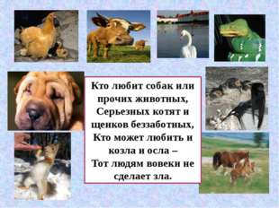 Кто любит собак или прочих животных, Серьезных котят и щенков беззаботных, Кт