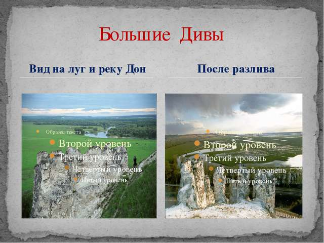 Вид на луг и реку Дон Большие Дивы После разлива