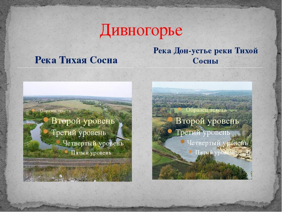 Река Тихая Сосна Дивногорье Река Дон-устье реки Тихой Сосны