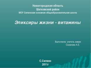 Нижегородская область Шатковский район МОУ Силинская основная общеобразовател