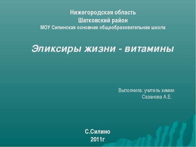 Нижегородская область Шатковский район МОУ Силинская основная общеобразовател...