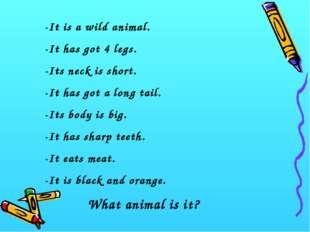 -It is a wild animal. -It has got 4 legs. -Its neck is short. -It has got a l