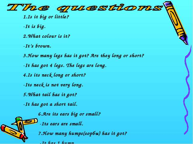 1.Is it big or little? -It is big. 2.What colour is it? -It's brown. 3.How ma...