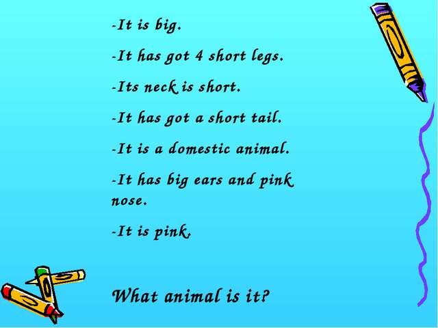 -It is big. -It has got 4 short legs. -Its neck is short. -It has got a short...