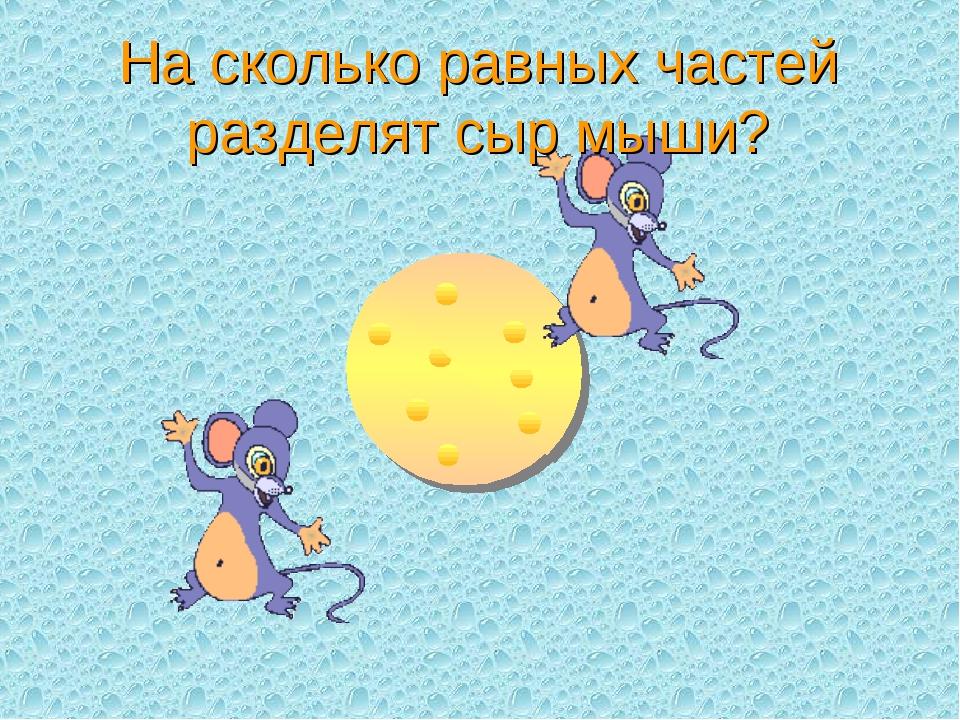 На сколько равных частей разделят сыр мыши?