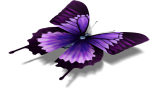 Android-Online.ru - HD Butterfly Theme