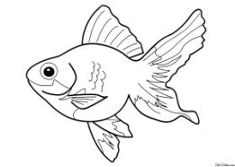 Раскраска Рыбка счастья Раскраски Рыбы