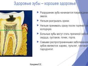 Здоровые зубы – хорошее здоровье Разрушение зуба начинается повреждения эмали