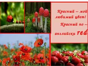 Красный – мой любимый цвет! Красный по – английски red