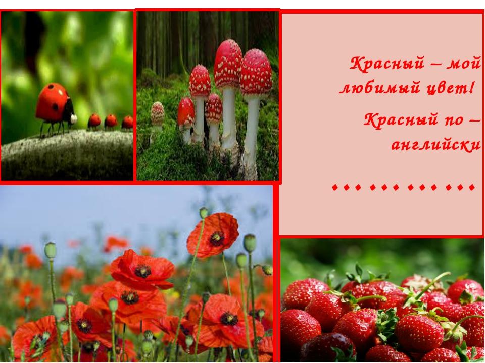 Красный – мой любимый цвет! Красный по – английски …………