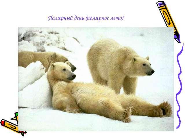 Полярный день (полярное лето)