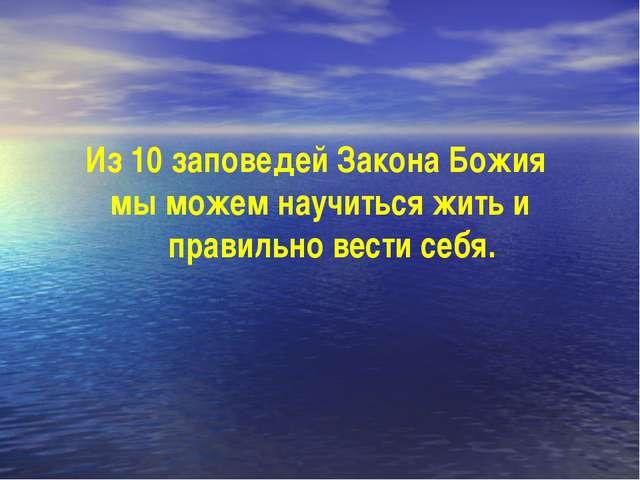 Из 10 заповедей Закона Божия мы можем научиться жить и правильно вести себя.