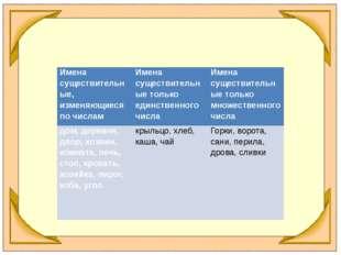 Имена существительные, изменяющиеся по числам Имена существительные только ед