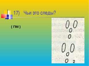 17) Чьи это следы? ( ПМ )